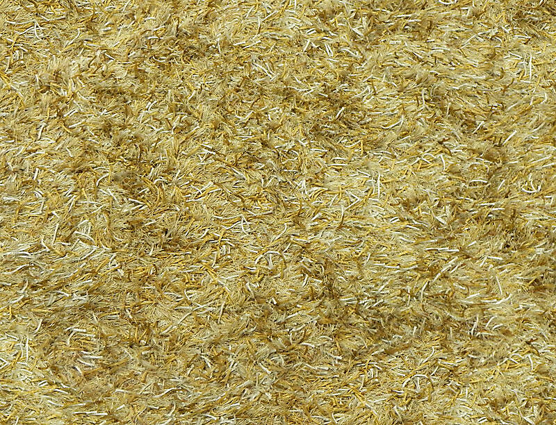 hairy carpet yellow