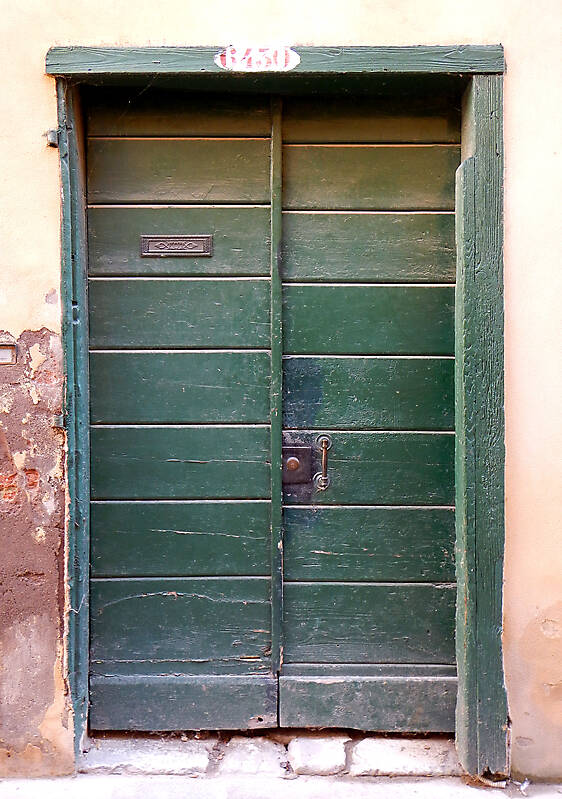 wooden door from venice 39