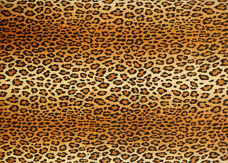 Texture Leopard Fabric Fabric Lugher Texture Library
