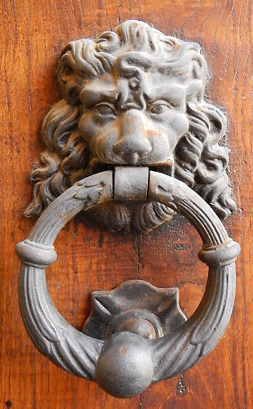 metal door decoration lion