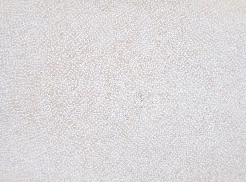 white italian stone clean