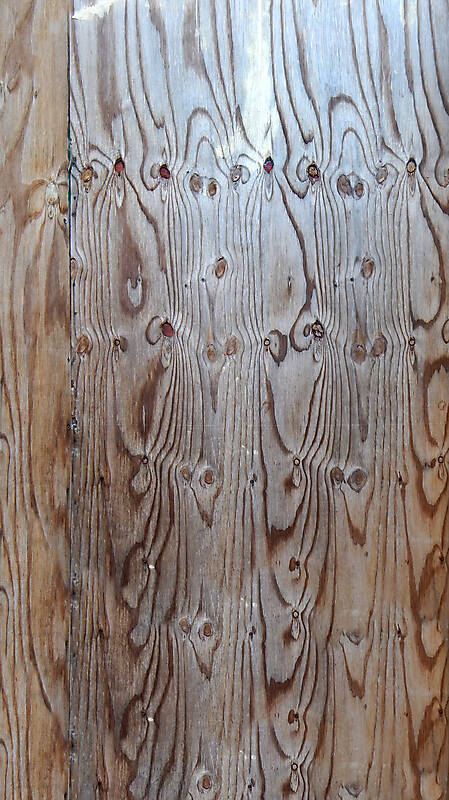 dry grey wood panel