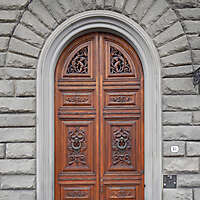 clean old style wood door 2