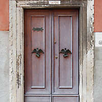wooden door from venice 20