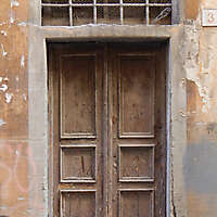 old ruined wood door 1