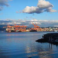red cranes port