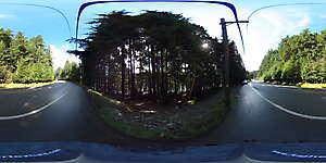 Nature JPG 360 18