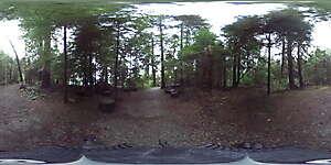 Nature JPG 360 5