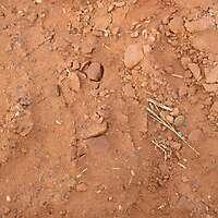 red soil 11