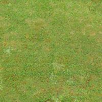 big grass 1