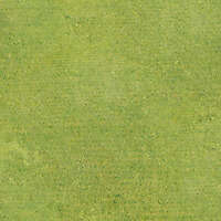 golf course field grass