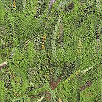 grass panel wall