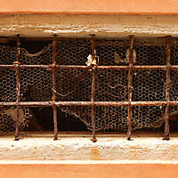 old window from venice 8