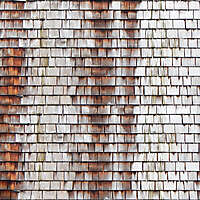 shingles water stains