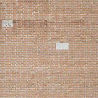 moldy bricks wall venice 26