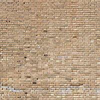 moldy bricks wall venice 27