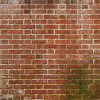 moldy red bricks