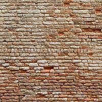 moldy bricks wall venice 10