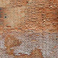 moldy bricks wall venice 12
