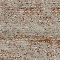 moldy bricks wall venice 13