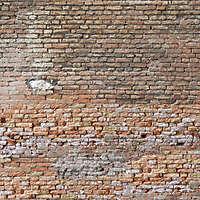 moldy bricks wall venice 14