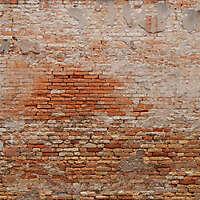 moldy bricks wall venice 15