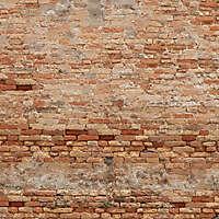 moldy bricks wall venice 16