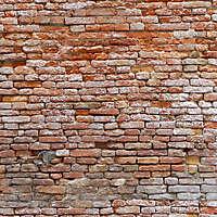 moldy bricks wall venice 18