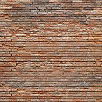 moldy bricks wall venice 19