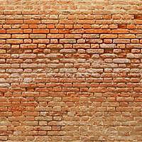 moldy bricks wall venice 1