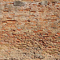 moldy bricks wall venice 21