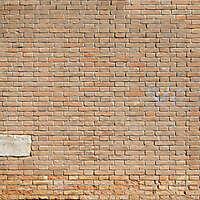 moldy bricks wall venice 28