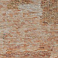 moldy bricks wall venice 30