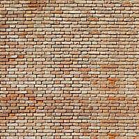 moldy bricks wall venice 31