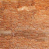 moldy bricks wall venice 33