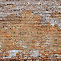 moldy bricks wall venice 4