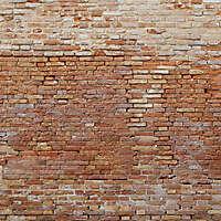 moldy bricks wall venice 5
