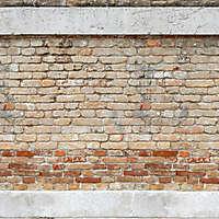 moldy bricks wall venice 8