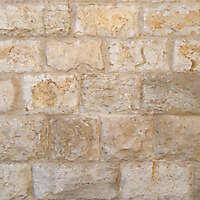 old stone bricks 30