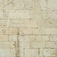 old stone bricks 48