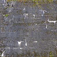 dirt concrete black 2