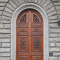 clean old style wood door 2