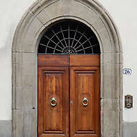 clean old style wood door 7