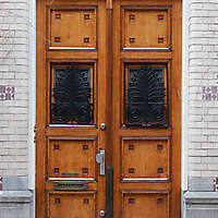 neoclassical wood door 20
