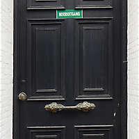 neoclassical wood door 4