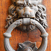 metal door decoration lion
