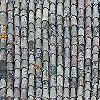 tiles roof old and dirt 3