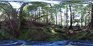Nature JPG 360 14