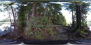 Nature JPG 360 15