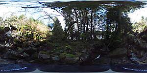 Nature JPG 360 17